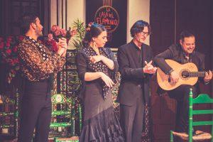 Sevilla - Flamenco Show
