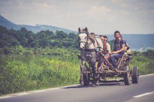 Pferdewagen in Siebenbürgen, Rumänien