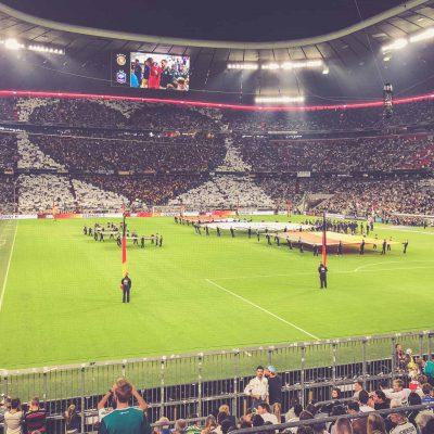 Herz Choreo Länderspiel, Allianz Arena